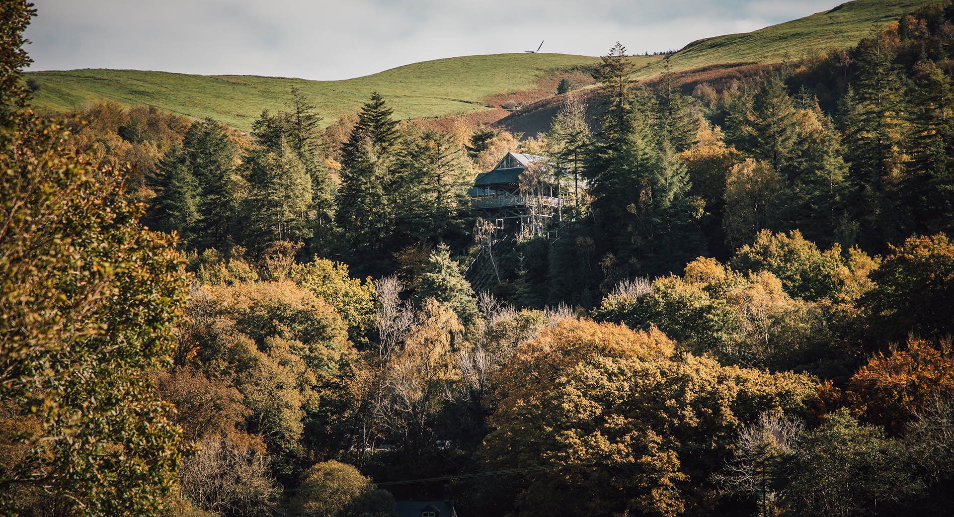 Looking through autumnal trees at the cliff railway station at CAT