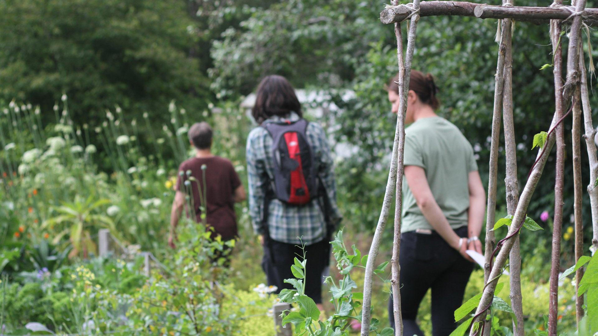 Students walking through one of the CAT gardens