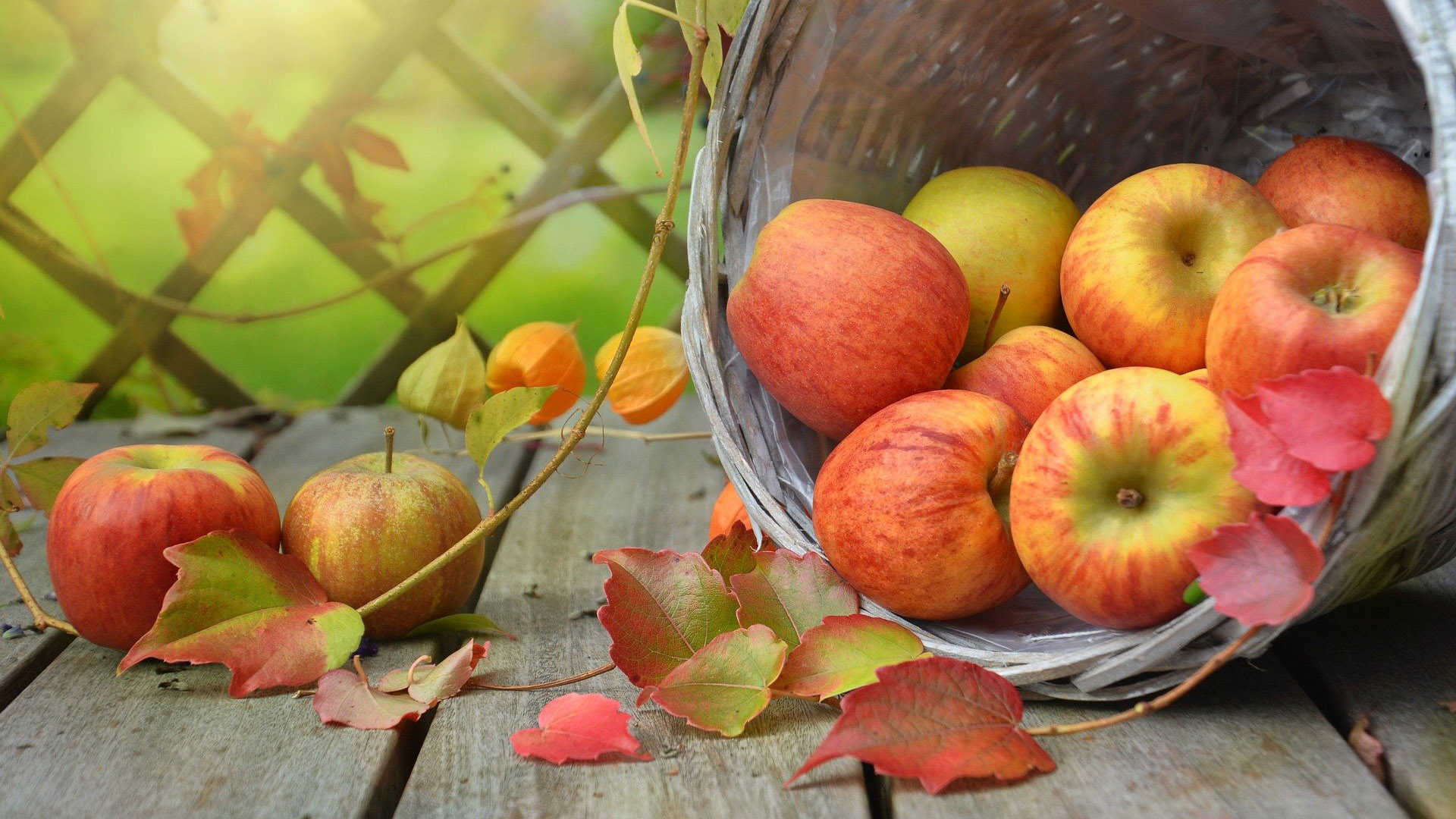 Red apples in a basket along with a few autumn leaves